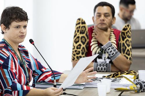 Reunião Comissão Organizadora da 6ºCNSI | by 6ª Conferência Nacional de Saúde Indígena