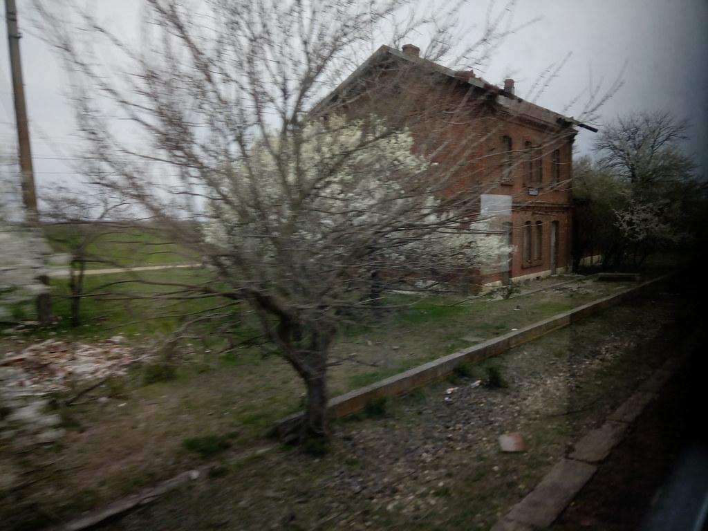 907 : Rosiori Nord - Costesti - Pagina 20 46647786445_b5c7cd2446_b