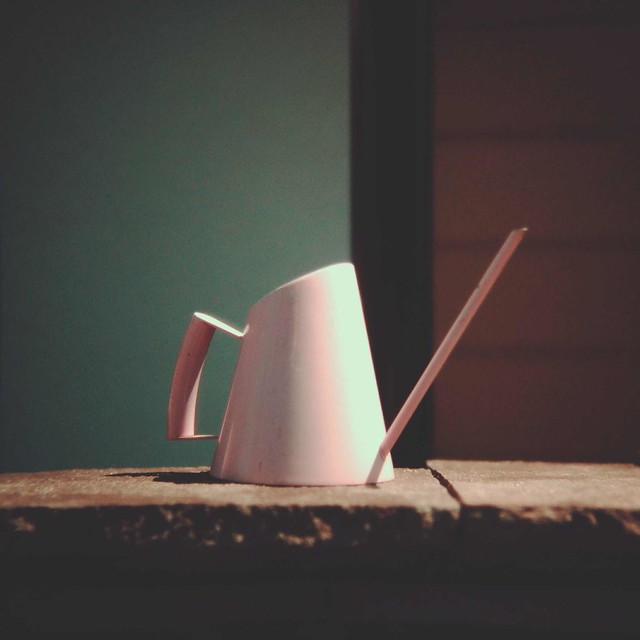 Slim watering can