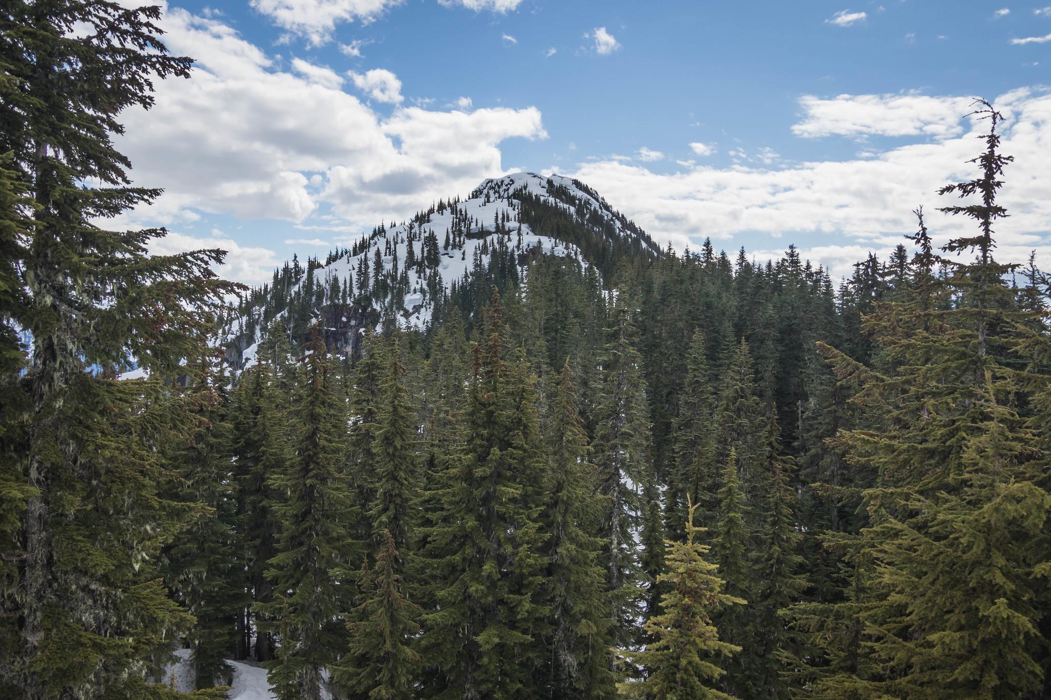 Oakes Peak from the ridge