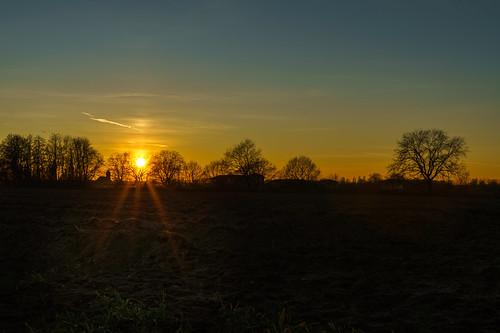 sonne sonnenuntergang himmel sonnenstern wald baum bäume feld wiese acker natur tief ilce7rm3