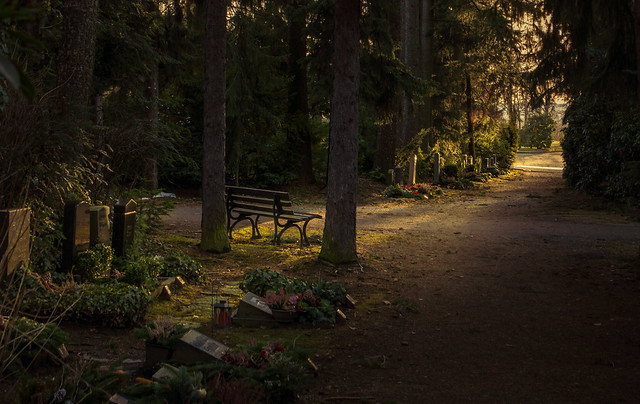 Friedhof im Licht
