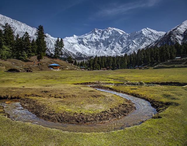 Fairy meadows-Nanga Parbat 9th Tallest Peak - Diamir Pakistan