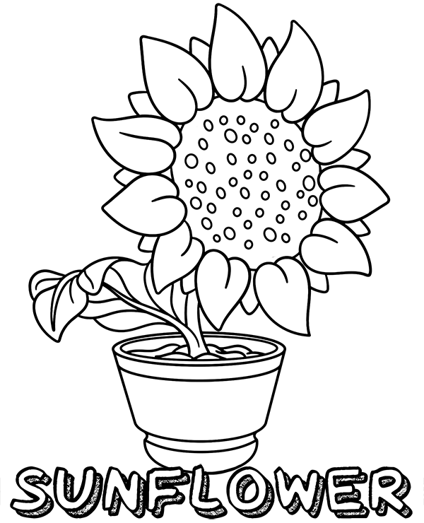 Sunflower coloring page to print - a photo on Flickriver
