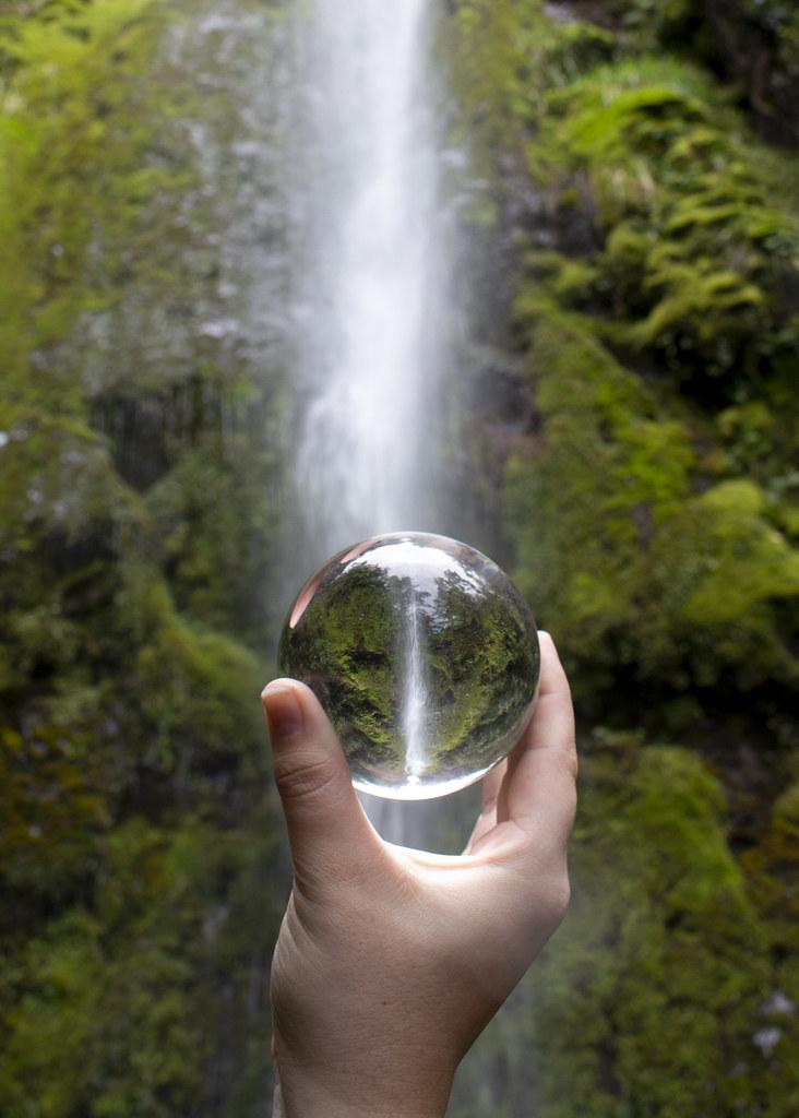Resultado de imagen de Dog Stream Waterfall