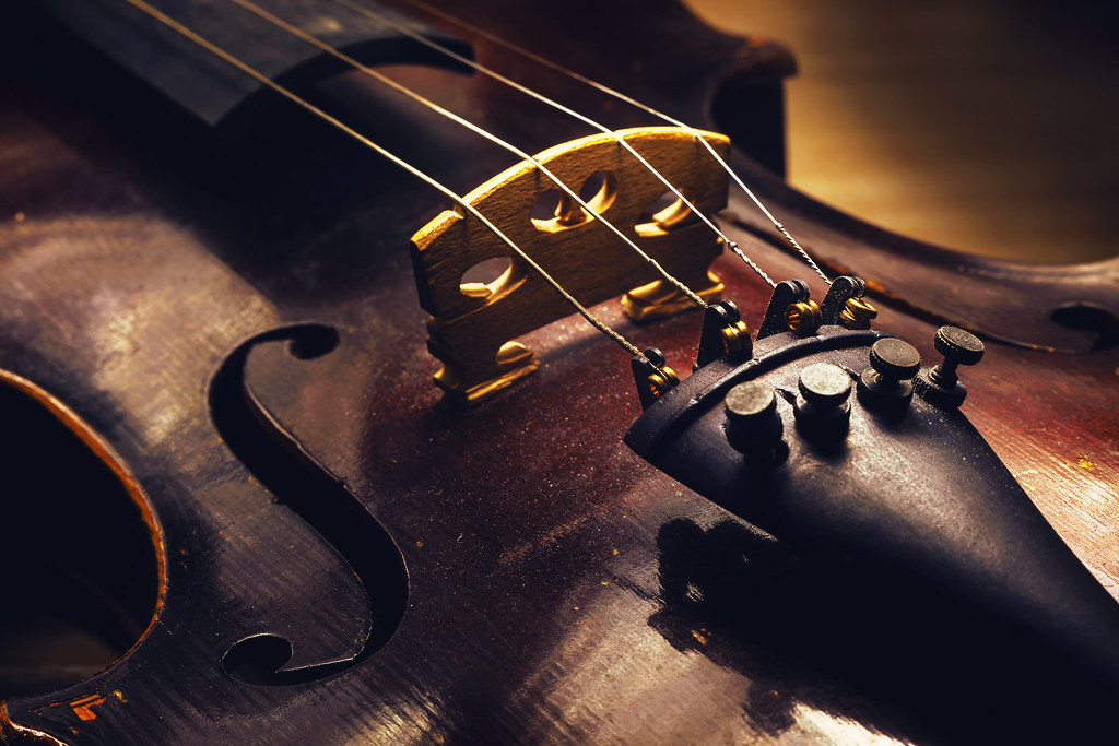 Details of an old Violin | Closeup view on old dusty violin