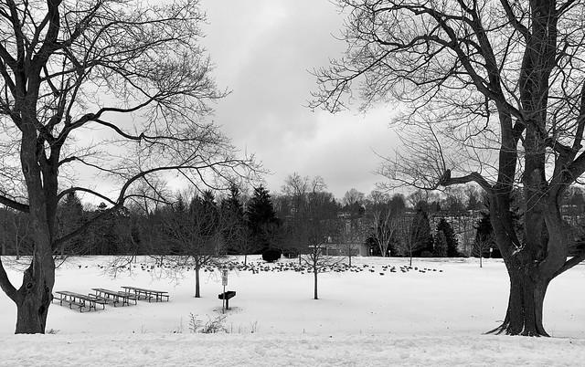 Springbank Park, London, Ontario