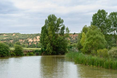 Meandro del Río Duero en Valdespina | by gr14lasendadelduero