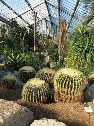Kew Gardens | by RachelC