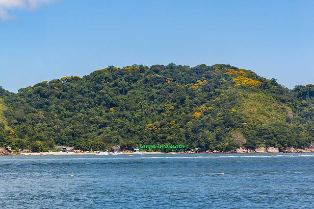 Goes beach seen from Santos