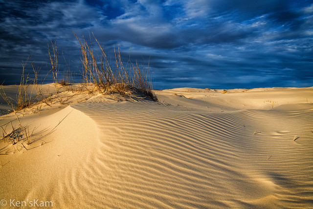 Late day in sandhills
