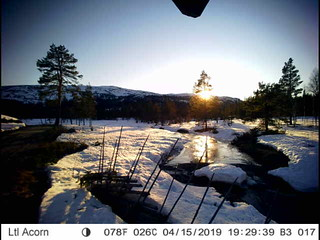 04-15 19:29 | by vikerfjell.webcam