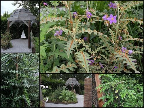 (41) Festival International des Jardins de Chaumont-sur-Loire 2012 44724235520_6295ba92c1