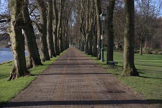 Long walkway at Avenham Park, Preston | by Tony Worrall