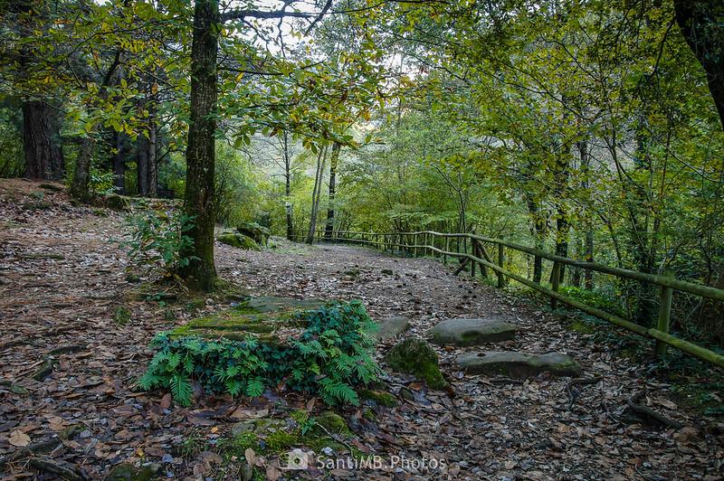 Pla d'en Xurri en Sant Privat d'en Bas