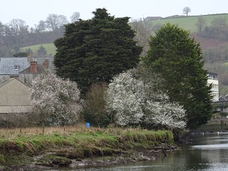 Spring is on the way | by Phil Gayton
