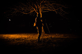 Dark Winter Photographer
