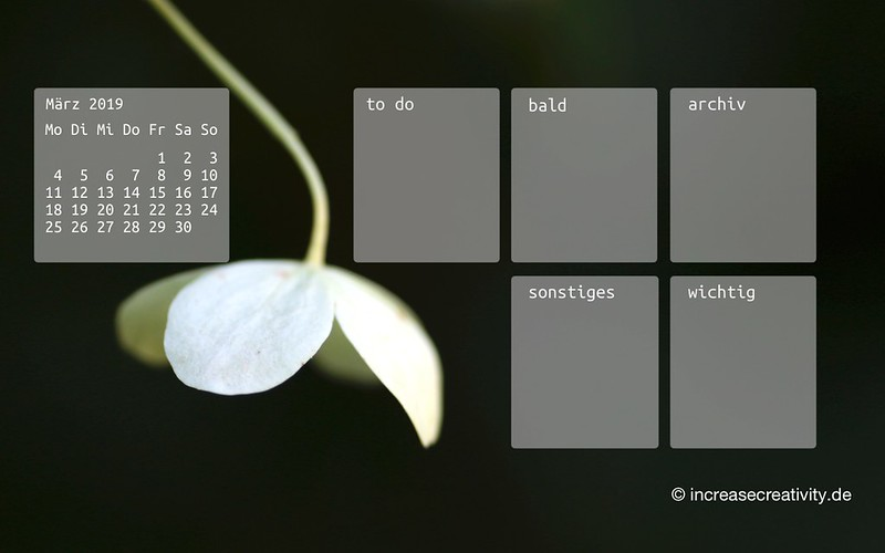 032019-blume-organizedDesktop-wallpaperliebe-increasecreativity