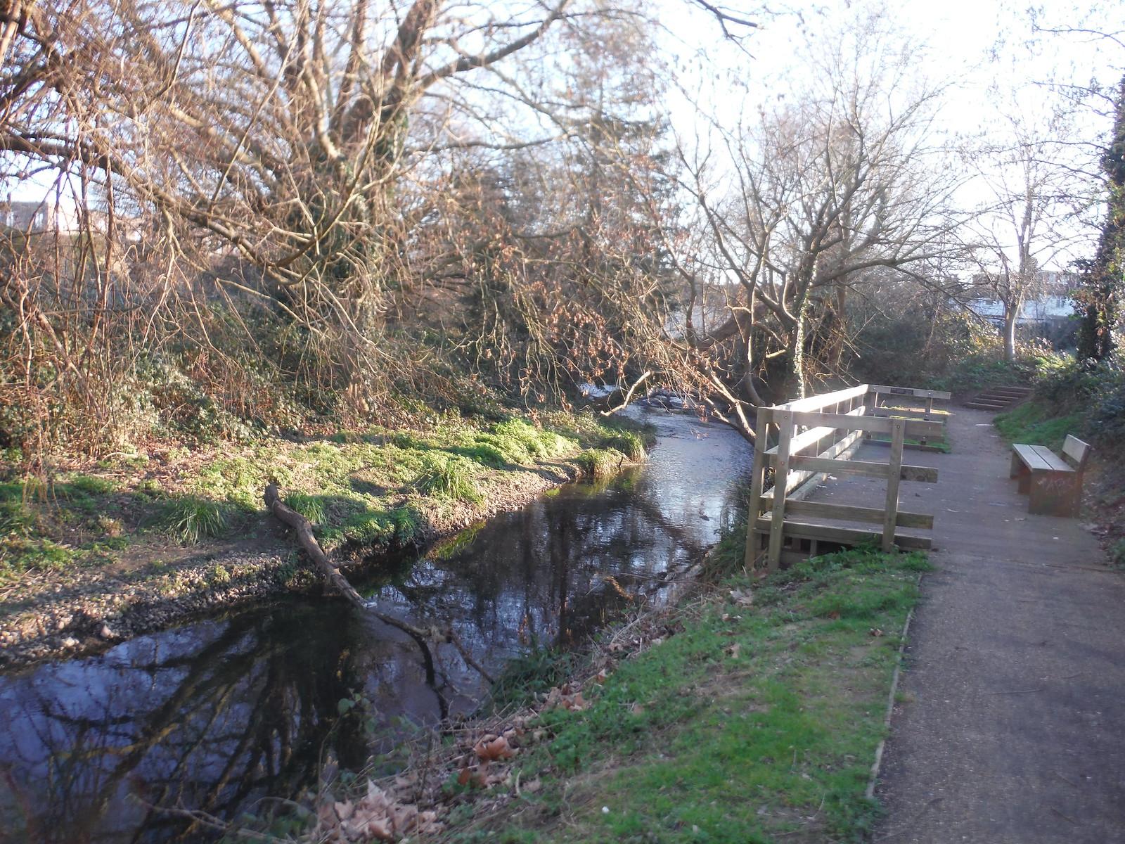 Boardwalk on the Ravensbourne, Ladywell Fields SWC Short Walk 36 - Waterlink Way (Lower Sydenham to Greenwich)