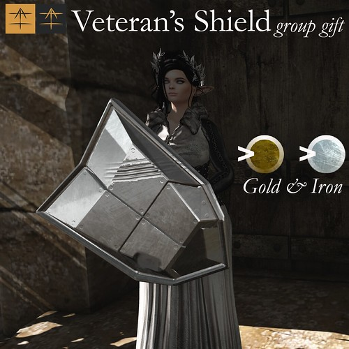 ^AH^ Veteran's Shield