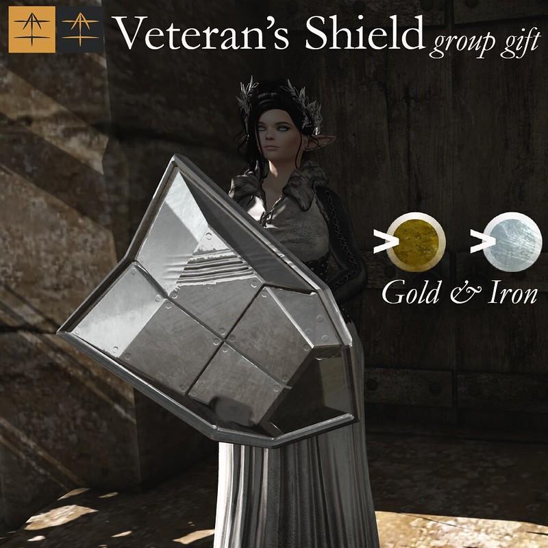 ^AH^ Veteran's Shield