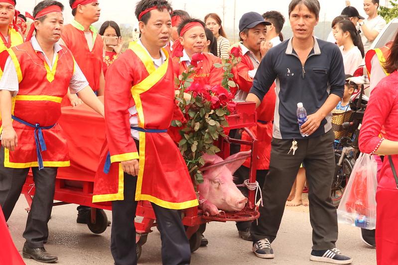 Nem Thuong pig chopping festival, Vietnam 2019
