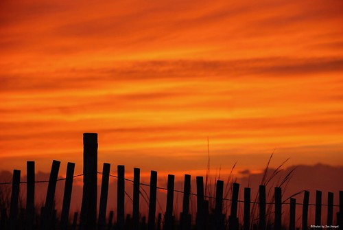 itwasasunsettoremember2 hff happyfencefriday fencefriday fenceline fence friday sunset evening eveninglight eveningskies lowerslowerdelaware lsd lewes lewesde sussexcounty silhouette silhouettes clouds watchingthesunset capehenlopenstatepark capehenlopen statepark park