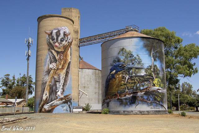 Rochester Silo Art