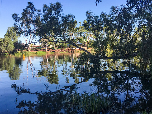 Reflections in the Loddon River