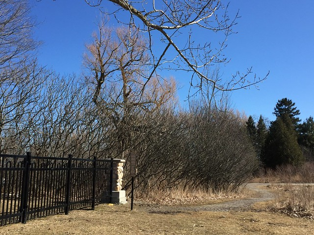 Simcoe point pioneer cemetery near  Rotary park and Duffins Creek ,it almost felt like spring . Ajax Ontario Canada March 27 2019
