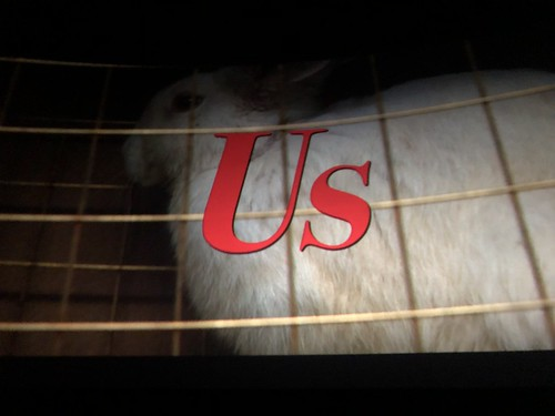 "Movie Review: ""Us"" terrifies and confuses"
