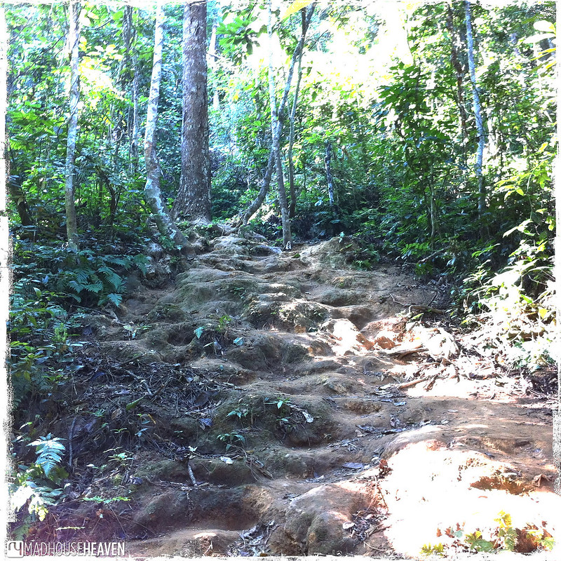 Laos - 0602
