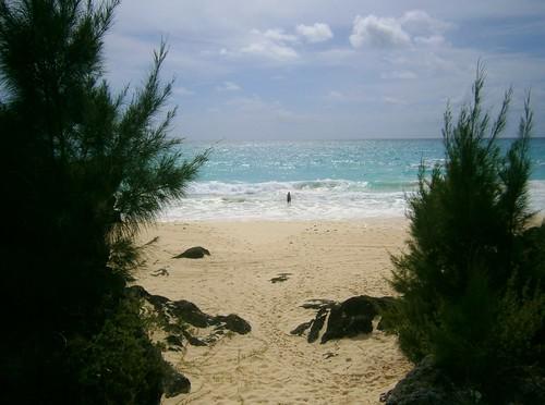 atlanticocean atlanticoceanbeach bermuda bermudabeach beach southshorepark southshoreparkbeach