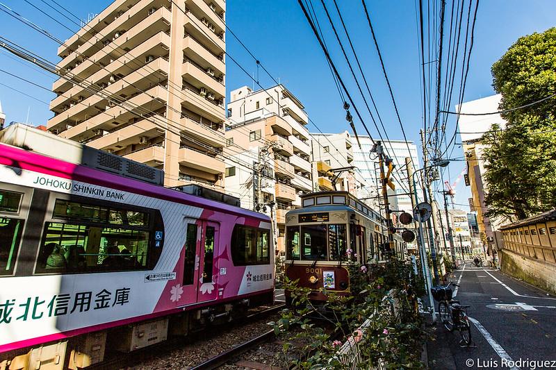 Dos tranvías de la línea Sakura Tram circulando por Otsuka