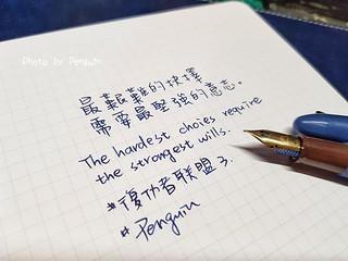 20190323_145041-01 | by 肥油太厚-鵝娘