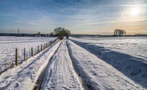 farmtrack farmland sunsetting snowscenes snow shadows fences skys