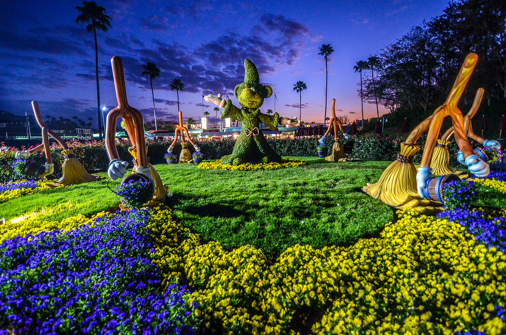 Mickey topiary DHS sunset