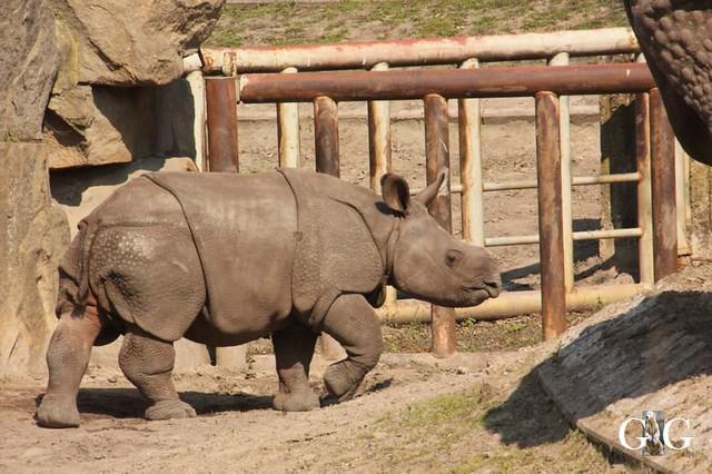 Besuch Tierpark Friedrichsfelde 06.04.2019112
