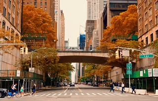 City colors in Autumn  - New York City | by Andreas Komodromos
