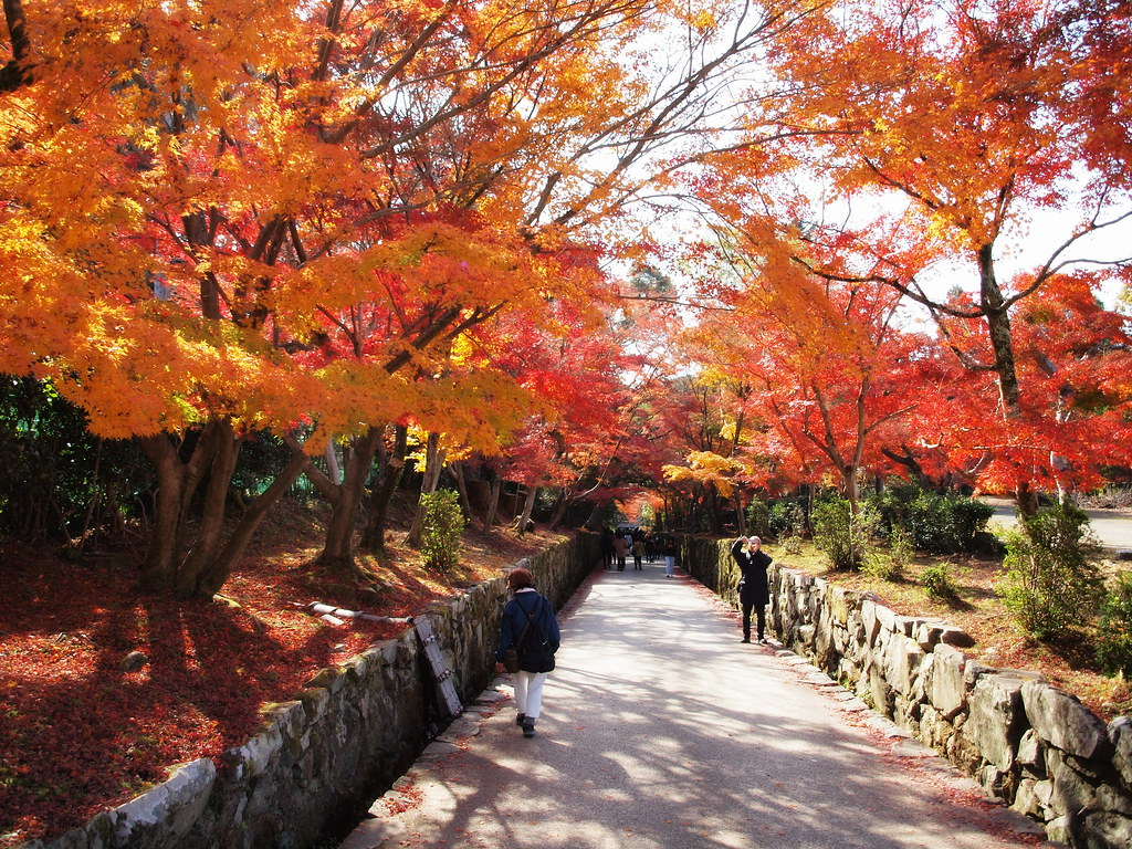 the approach to the Kousho-ji temple
