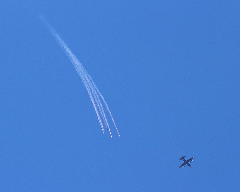 IMG_9168 Wings of Blue