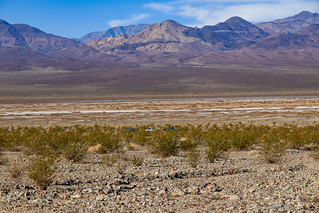00079 - 2019-02-15 - Hiking Death Valley - Part 2 | by turbodb