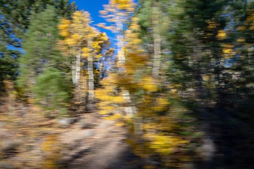 Autumn in the Sierras | by RuggyBearLA