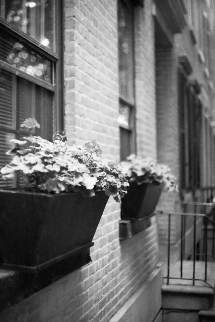 Street Still Life