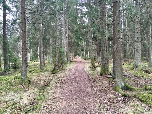 Lidköping mm