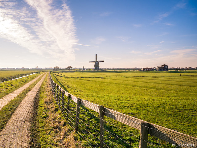 Polder landscape in Holland
