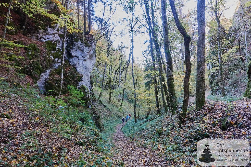 Wandern auf dem Premiumweg DonauWelle Donaufelsen-Tour zwischen Fridingen und Beuron