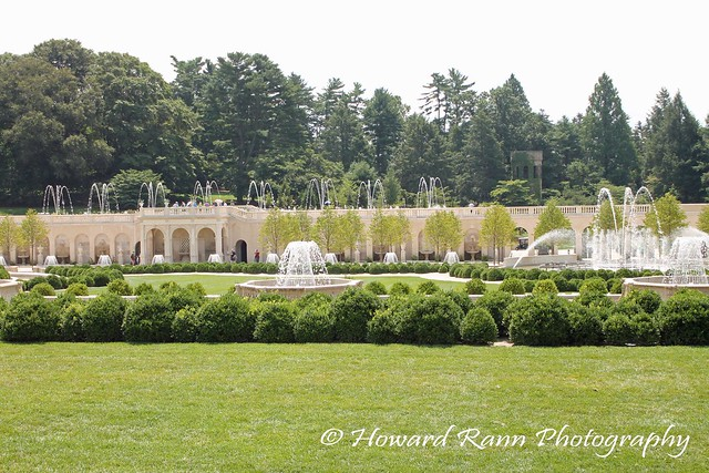 Longwood Gardens Summer 2017 (151)