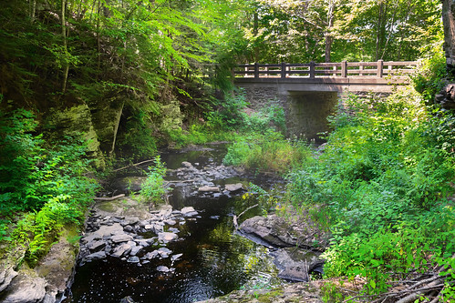 landscape stream water river bridge road 1929 trees green foliage rocky rocks stones
