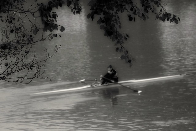 The blurred rower.